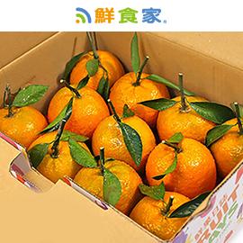 鮮果日誌 萬事大桔桶柑禮盒(4台斤裝)
