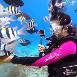 台東綠島 前往世界級的潛水點!親近玻璃海 x 珊瑚礁的潛水